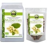 Ecoidées - Mulberries Bio 125g
