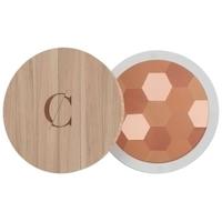 Couleur caramel - Poudre Mosaïque Bio N°233 Mat