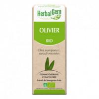 Herbalgem- Olivier Bourgeons Bio 15ml