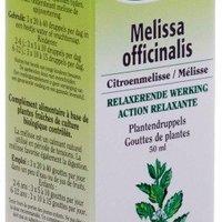 BIOVER- Teinture Mère Melissa Officinalis Bio (Mélisse)
