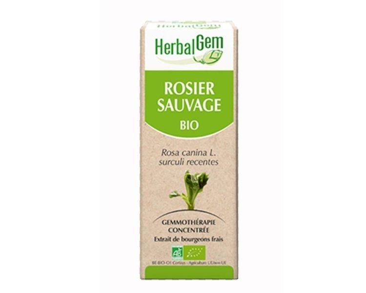 Herbalgem rosier sauvage Bourgeons Bio 15 ml