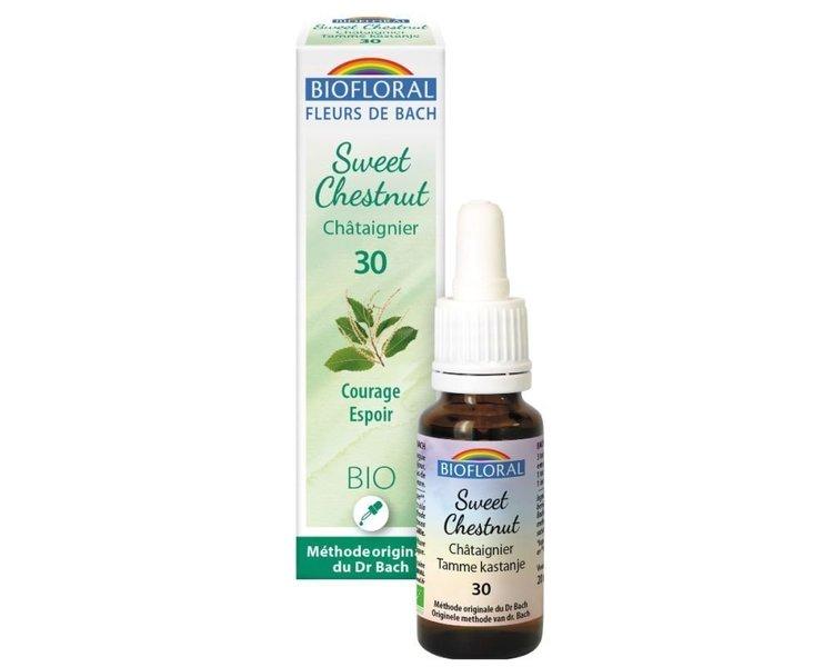 Sweet chestnut N°30 Bio Biofloral gouttes