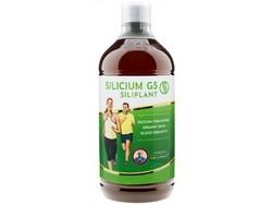 Silicium G5 siliplant Loic Le Ribault 1L
